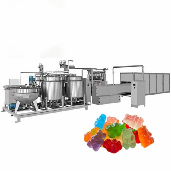 Lower price CBD jelly gluten candy double color sweet enzyme gummie coconut flavour fudge candy machine maker