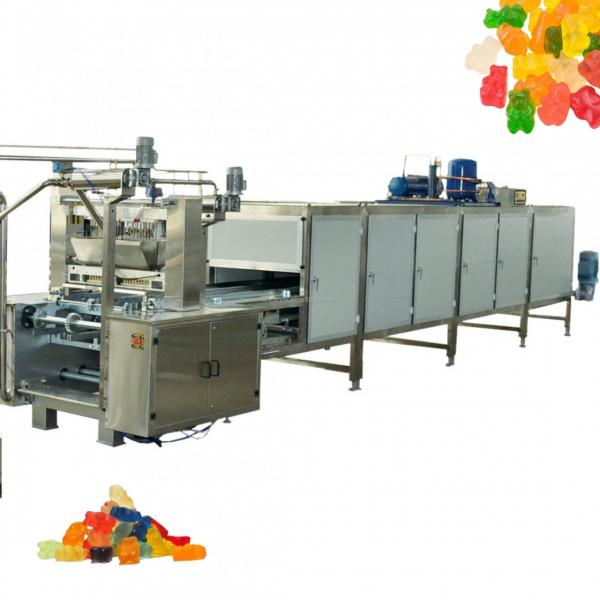 Full Automatically Electric Capsules and Tablets Counting Machine 12 Channel Double Output Automatic Gummy Bear Candy Counting Packing Machine